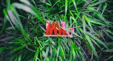 MO vasara: poezijos vakarai