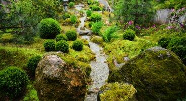 Ekskursija po japonišką sodą ir japoniškos arbatos degustacija