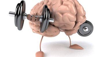 Kaip fizinis aktyvumas veikia smegenų funkciją.