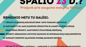Švelniosios ir kietosios saugumo priemonės Lietuvoje