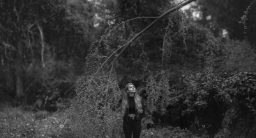 Vilko mergaitė