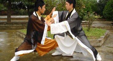 Taichi Tui Shou praktikos
