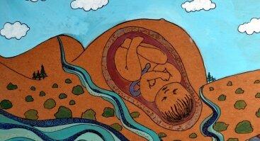 Asmeninės gimimo psichodramos ir dailės terapijos sesijos