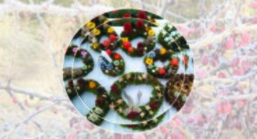 Advento vainikų kūrimo pamokos VDU Botanikos sode