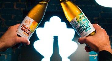 Nealkoholinio alaus žaidimas-degustacija su someljė
