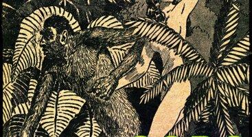 Kuti Kuti afrobeat | Godo
