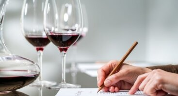 "Vyno mokymai ""Namų Somelje"""