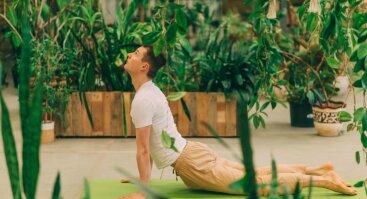 Joga tarp augalų