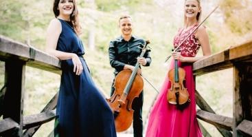 """Fortepijoninis trio """"META"""""""