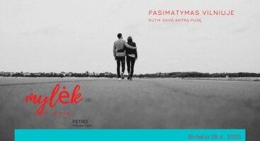 Pasimatymas Vilniuje/ Soulmate Speed Date in Vilnius