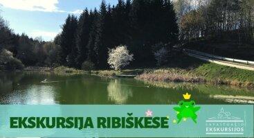 Ekskursija Ribiškių take su miškininku