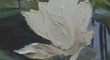 Aušros Rauličkytės ir Agnės Limantės tapybos paroda