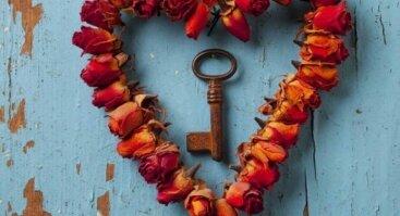 Širdies ir Besąlyginės Meilės Retritas I Emocinio Intelekto Ugdymas