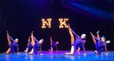 Meninės gimnastikos būrelis