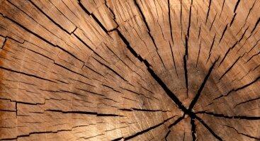 """Kūrybinės medžio dirbtuvės """"Kryždirbystės tradicija Lietuvoje: tradicijos ir inovacijos"""""""