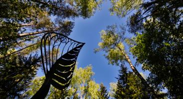 Sekmadienio rytas Europos parke: dėmesinga kelionė po meno pasaulį