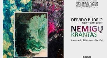 """Deivido Budrio tapybos darbų paroda """"Nemigų krantas"""""""