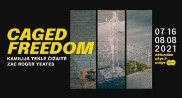 """""""Caged Freedom"""" - interaktyvi, audiovizualinė instaliacija"""