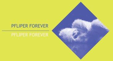 Pfliper Forever | XXII Tarptautinis universitetų teatrų forumas