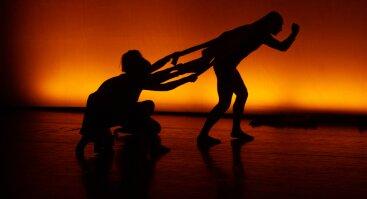 Nematomi   šokio spektaklis (12+)