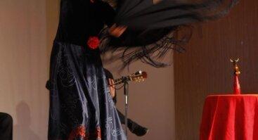 Šok Flamenko - šokių studija