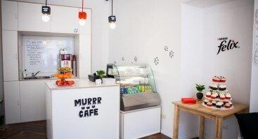 Murrr Cafe