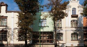 P.Domšaičio galerija