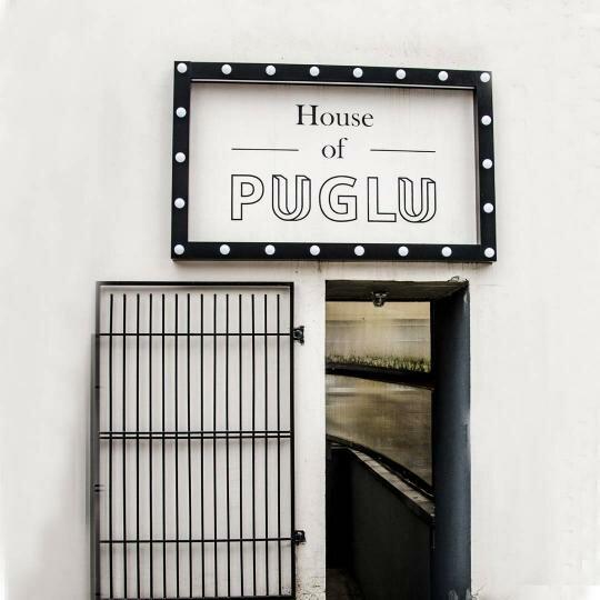 "Profesionalaus meno namai ""House of Puglu"""