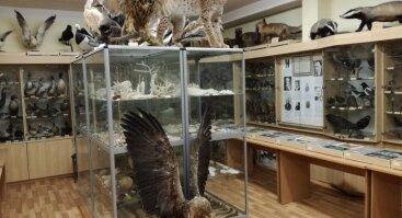 Stasio Gliaudžio gamtos muziejus